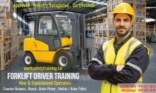 WORK SAFE Training Inc - Forklift Training Mississauga
