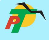Polo Travel Ltd